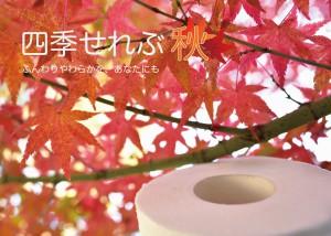 hyoushi_c87